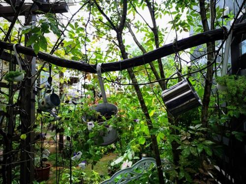 庭の入り口左側