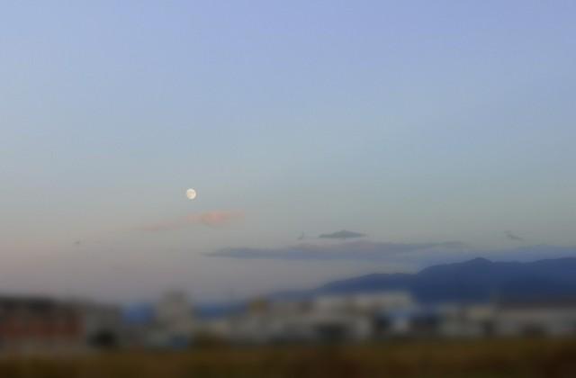 夕暮れ時のお月さま