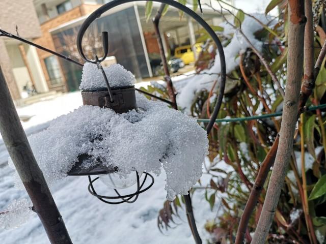 ランタンの傘に綿雪