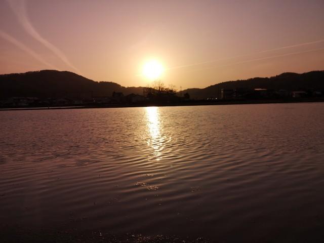 田んぼの水面に映る夕陽