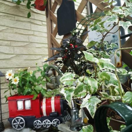 車のポット/花鉢